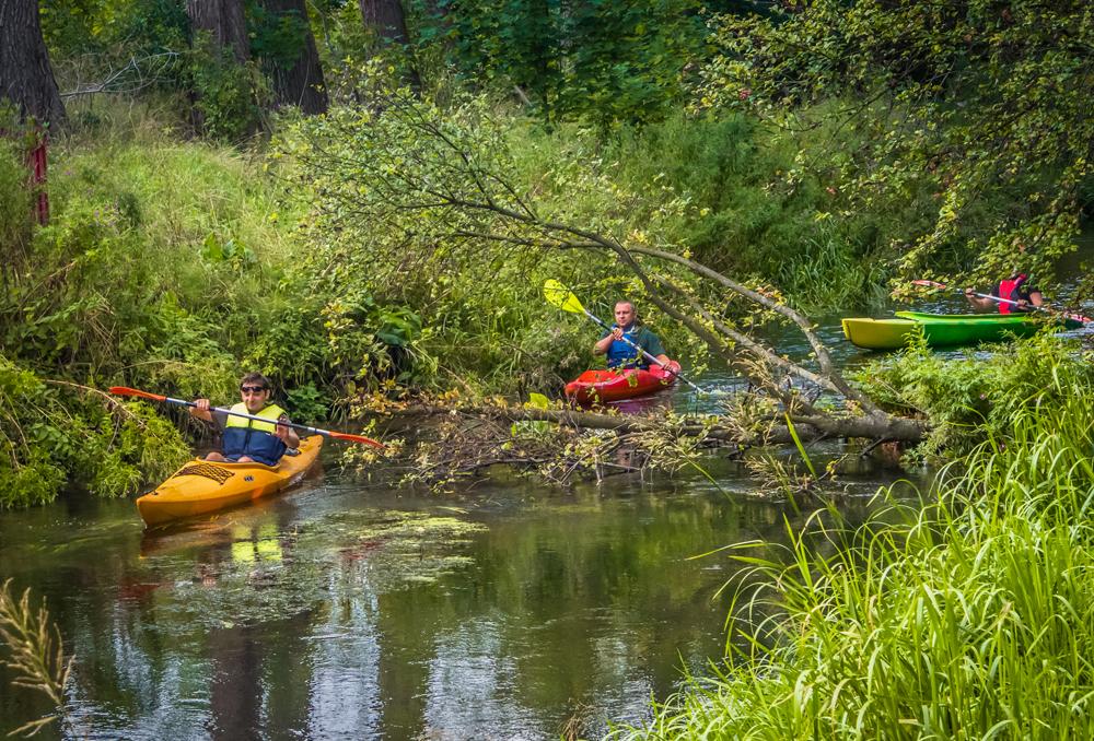 Kajakarze płynący rzeką