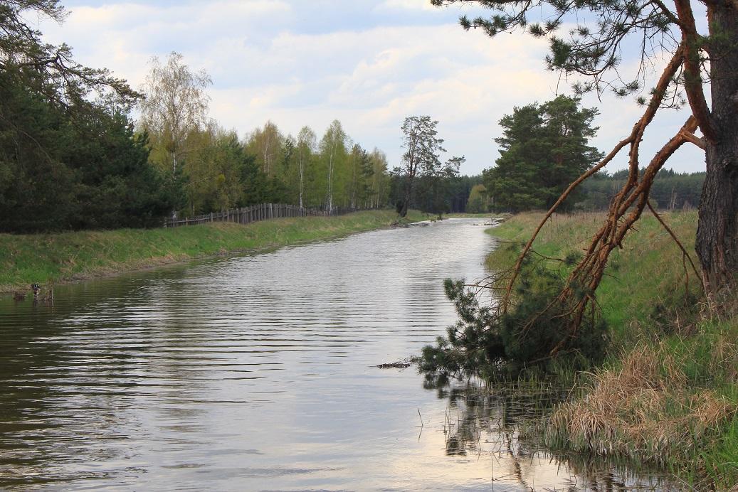 Kanał Wdy – easy section (Borsk – Cegielnia)